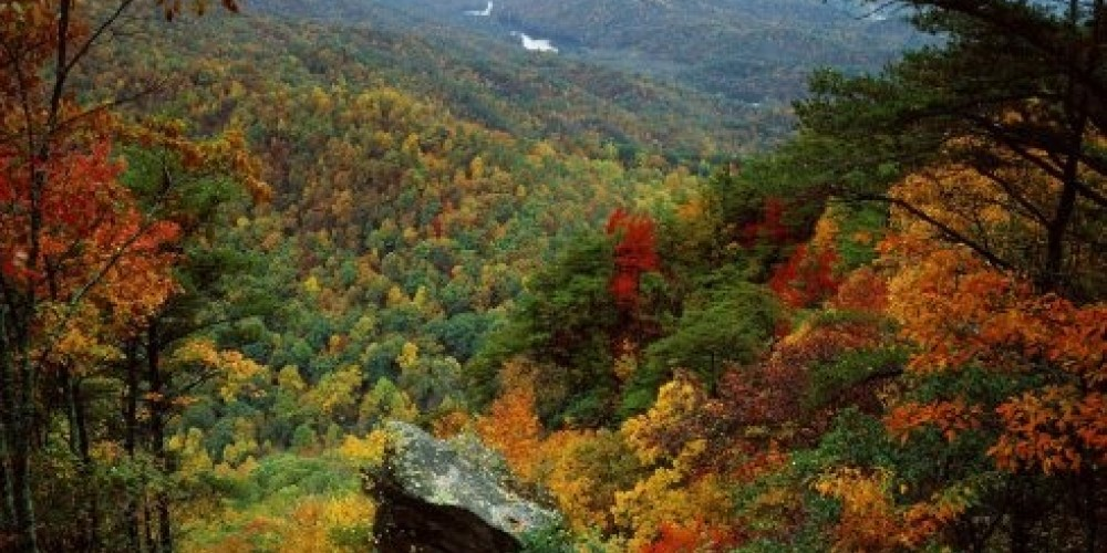 Foliage in the Tennessee River Valley – Cumberalnd Gap