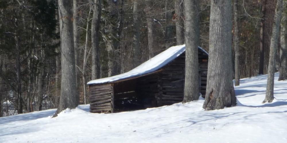 Winter snow scene – Larry Lane