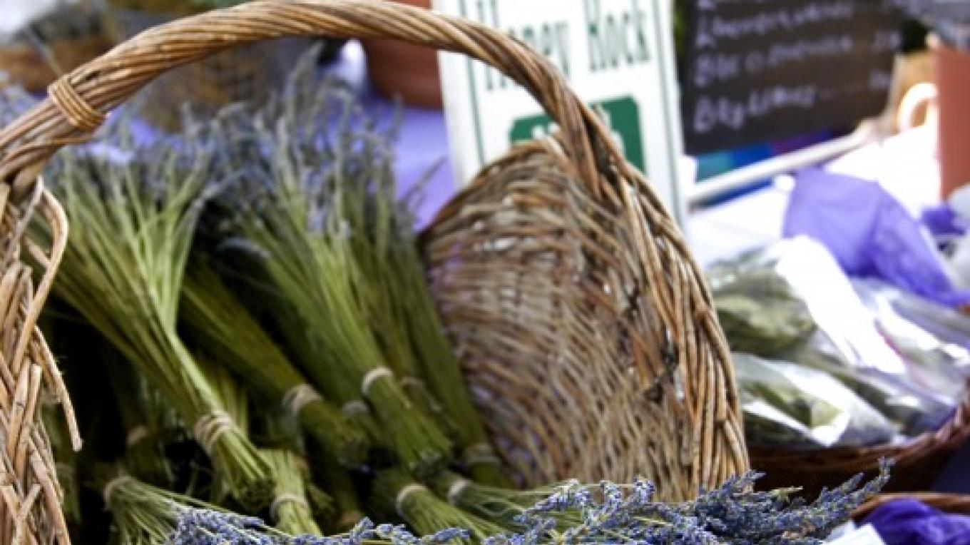 Lavender is just one specialty you will find at the festival