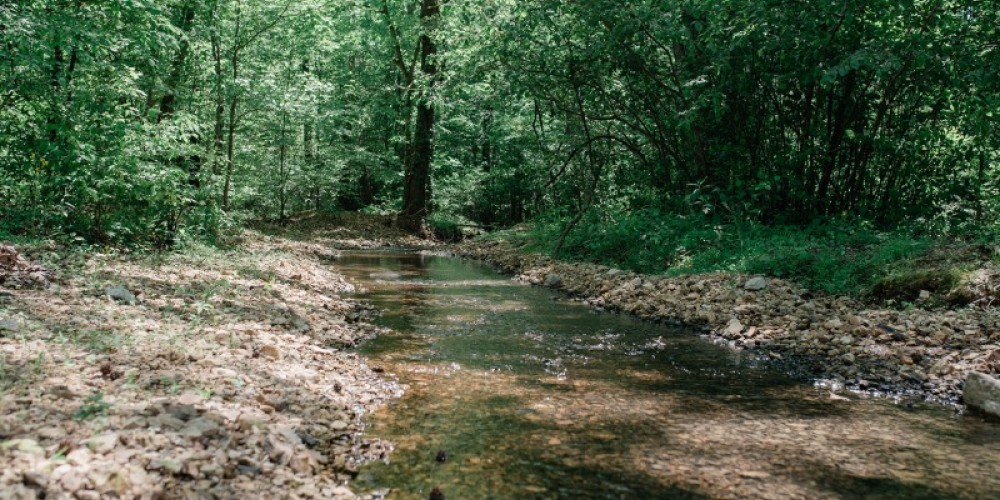 A small stream at the entrance of the park is enjoyable for small children and adults to wade in with its cold, clear water. – Cari Griffith