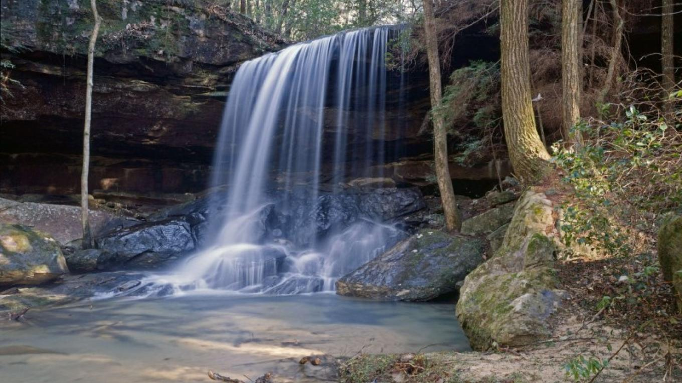 Turkey Foot Falls is within a 30-minute walk from the Sipsey River Picnic Grounds and Recreation Area, the main developed access area off of County Road 6 (Cranal Road). – John Dersham