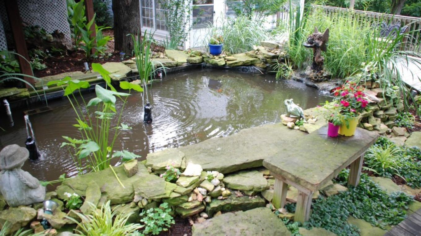 Relax and enjoy the Koi Pond – Ann Martin