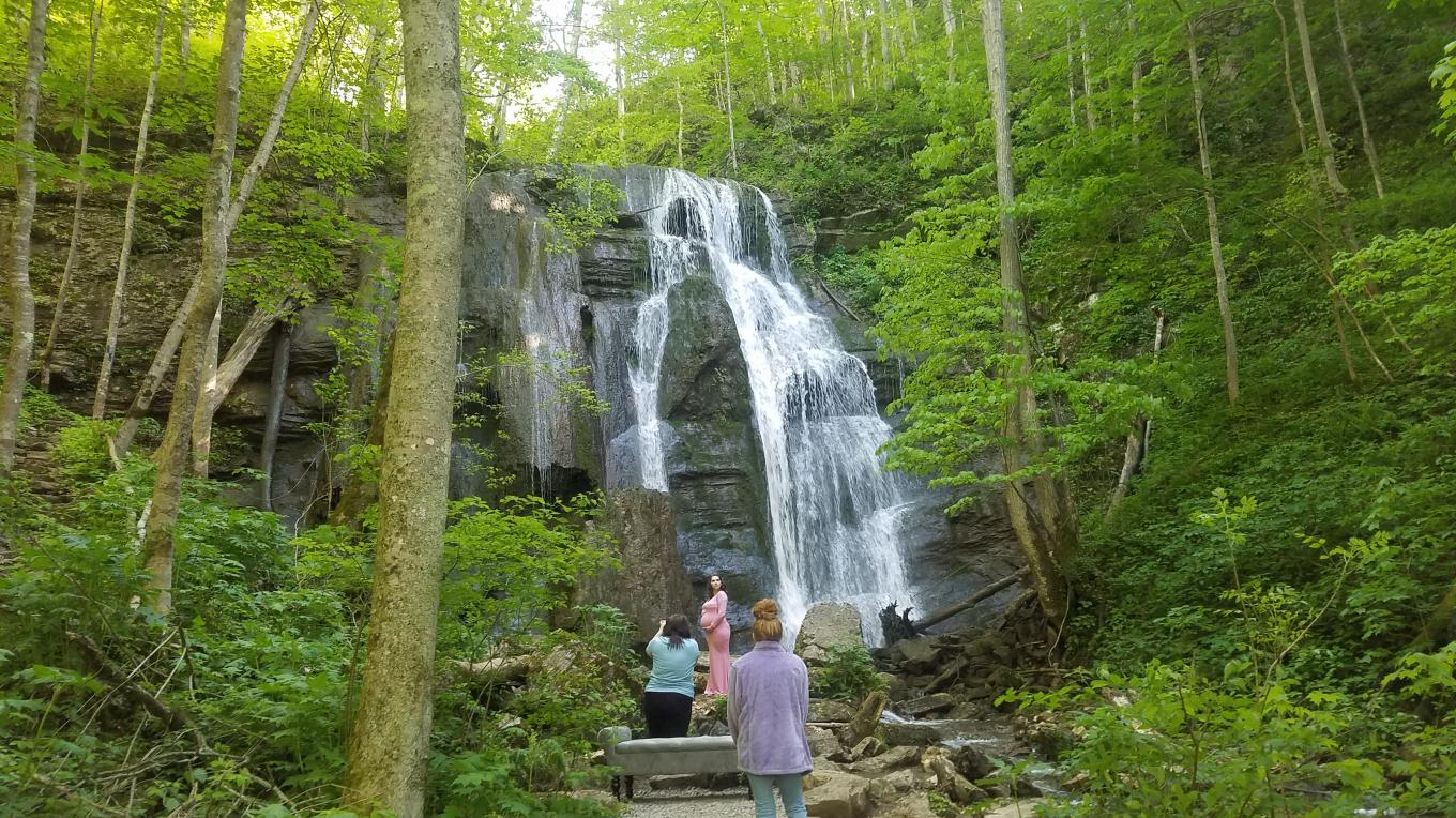 Tank Hollow Falls is located just a few blocks from downtown Cleveland, Va. There's a small parking area within sight of the falls and the area offers hiking trails that are accessible year-round.
