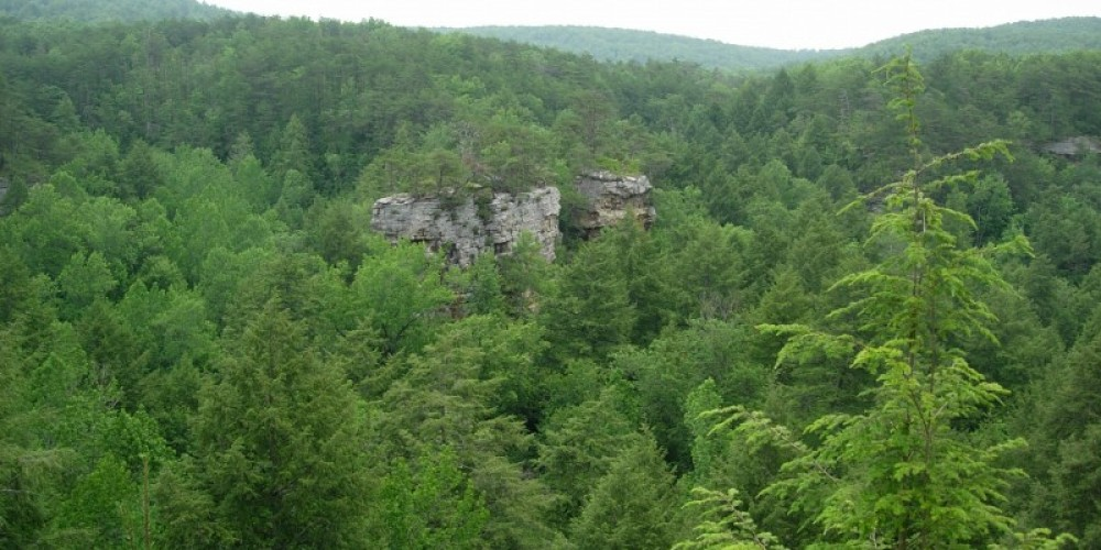 The Chimneys are two massive pinnacles of sandstone that rise 200 feet from the floor of Pocket Gorge within the Cumberland Plateau in Marion County, Tenn. – Tennessee Department of Environment and Conservation