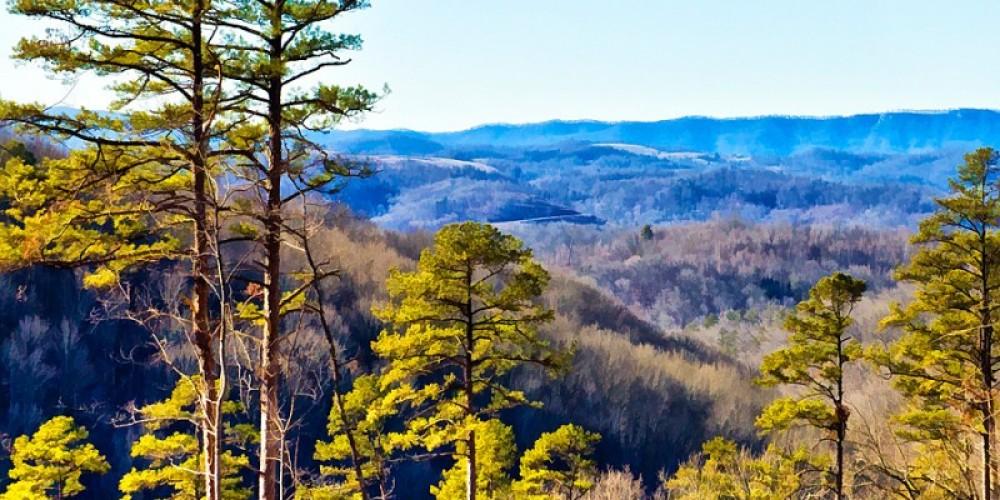 Mountain view from Chuck Swan – Hazel Erikson