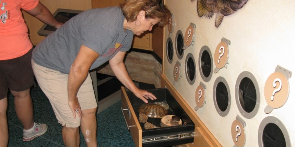 """""""Please touch"""" Discovery Drawers. – Joan Howe"""