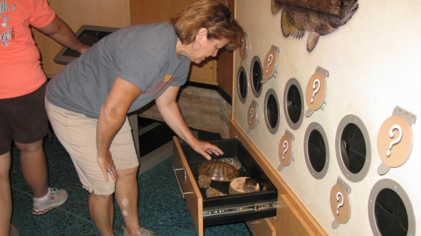 """Please touch"" Discovery Drawers. – Joan Howe"