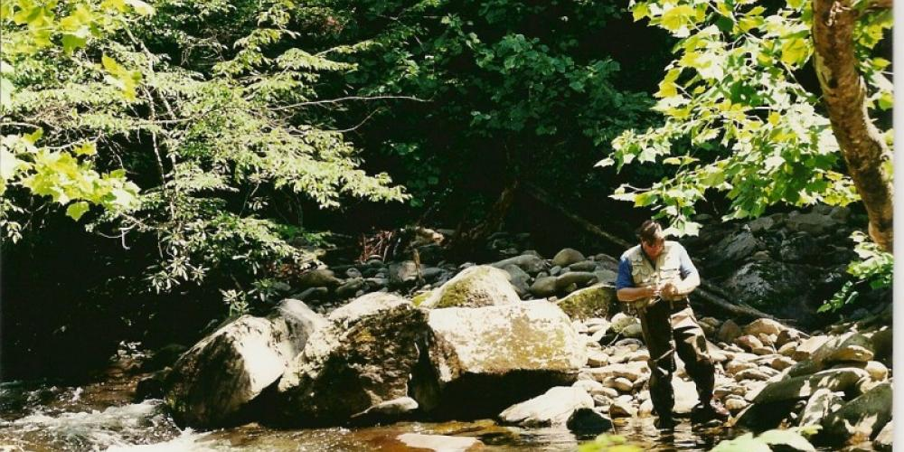 Citico Creek and pools – Delores Sowders