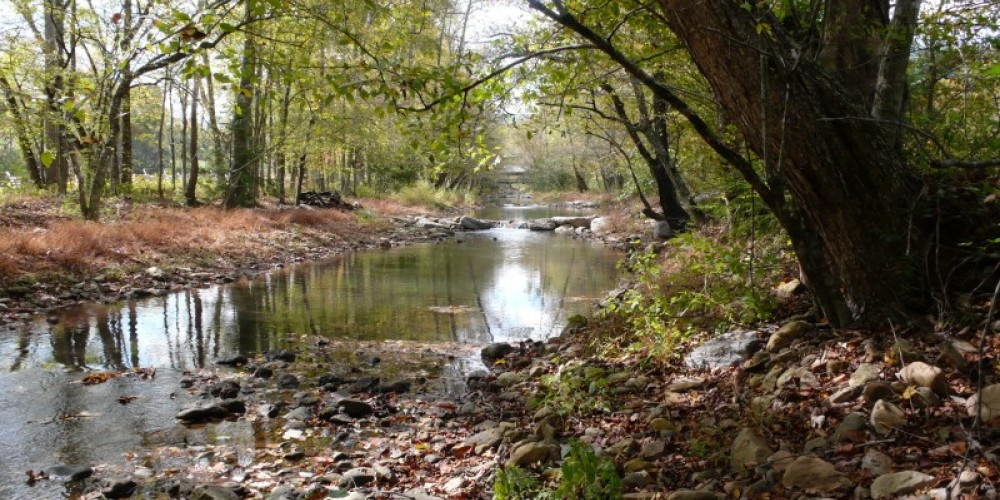 Idyllic view of Hesse Creek and just one of the many spots to fly fish, or just relax in the private benches and chairs placed about the property. – Kenny Markanich