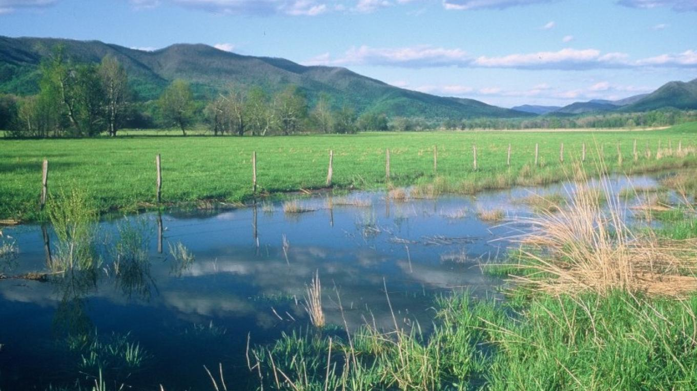 Cades Cove stream and meadow. – Towsend Visitors Center