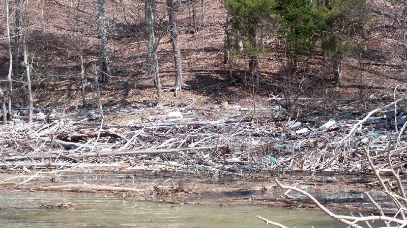 Wood to be cleaned up on Norris Lake.