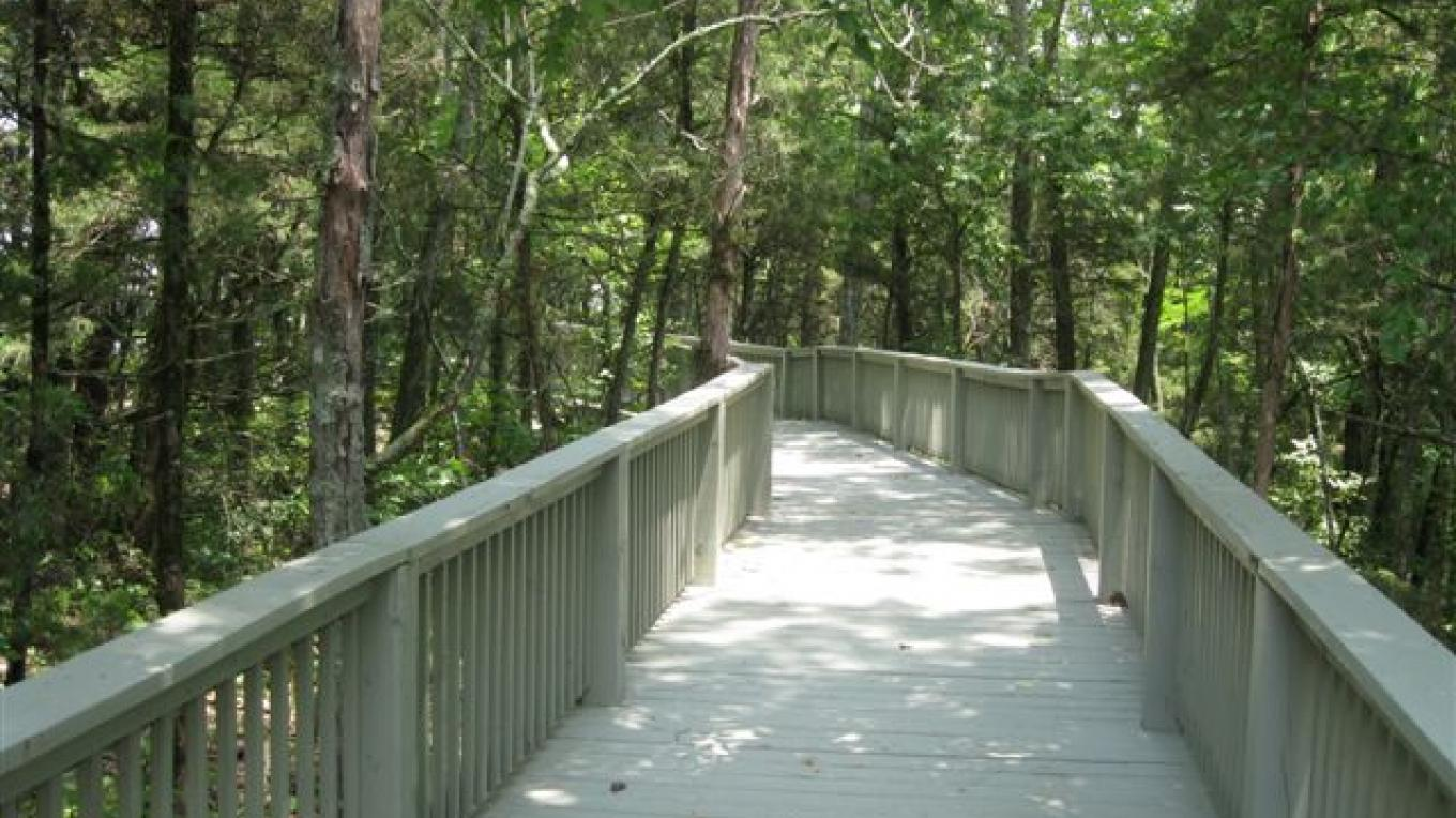Handicaped Ramp to Wildlife Overlook – R. Hoskins