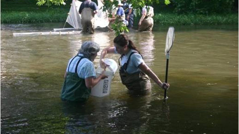 Water sampling citizen science