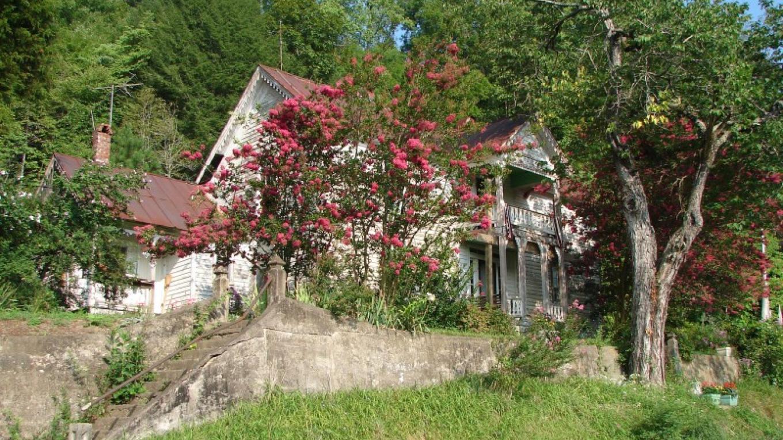 Crepe Myrtle adorn the historic Vaughn-Webb house. – Ingrid Buehler