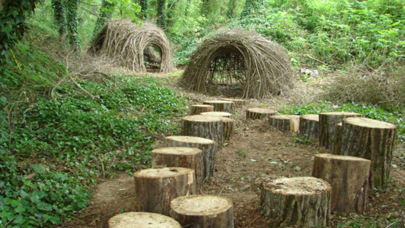 Jo's Grove - nature play area. – Ijams Nature Center