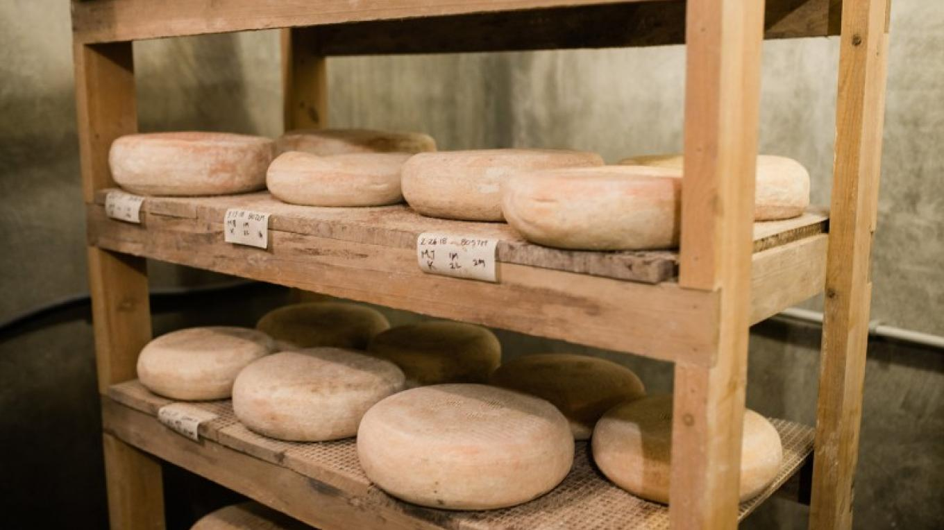 Bonnie Blue Farm's award winning cheese – Cari Griffith