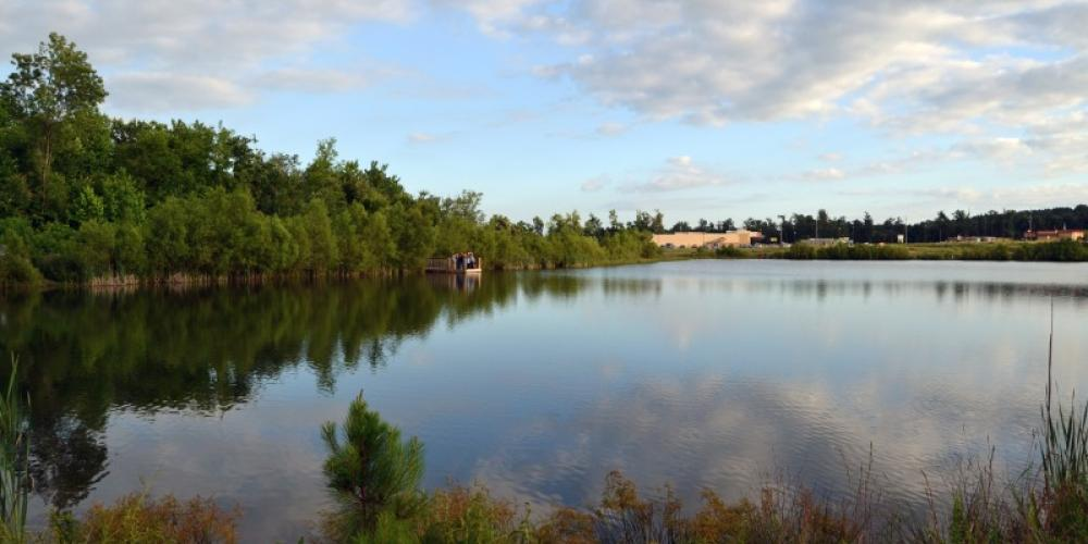 """Terry Pond at Harvest Square Nature Preserve is a beautiful sight during the summer environmental education programs called """"Tuesdays on the Trail."""" – Cathie Mayne"""