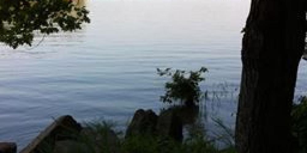 Bay Springs Lake – Gary Mathews