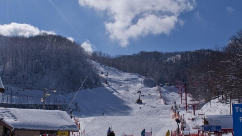 Looking from Ski School up to Mogul Ridge. – Ober Gatlinburg
