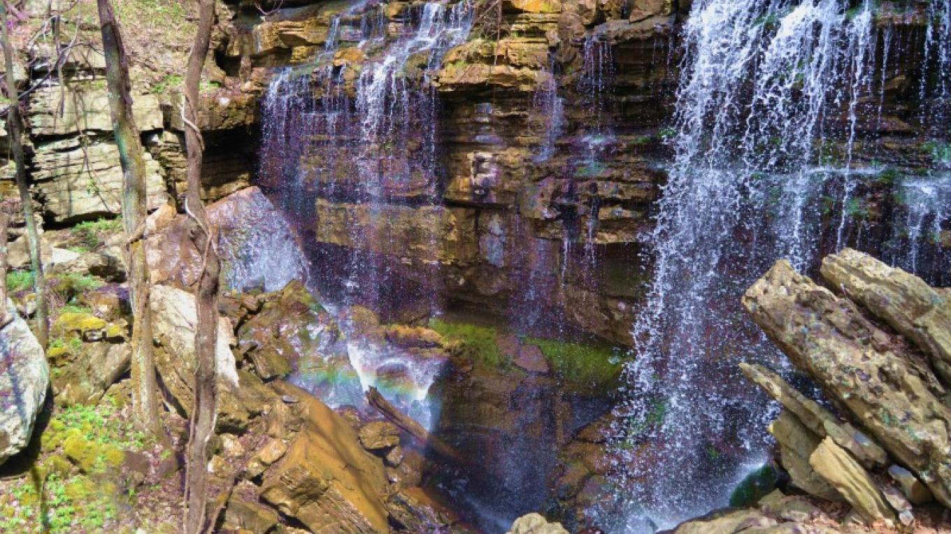 Falling Spring Sink is the tallest waterfall in Madison County, Alabama. – Cathie Mayne