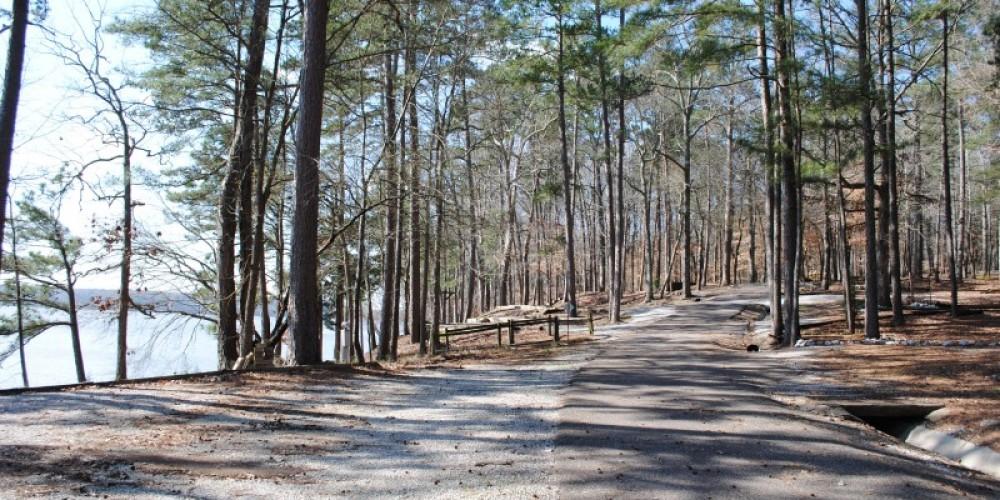 Shoreline Road – James Gibson