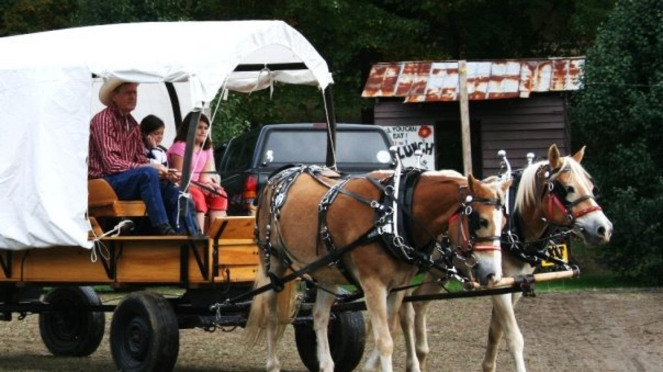 Wagon Rides at the 2009 Festival