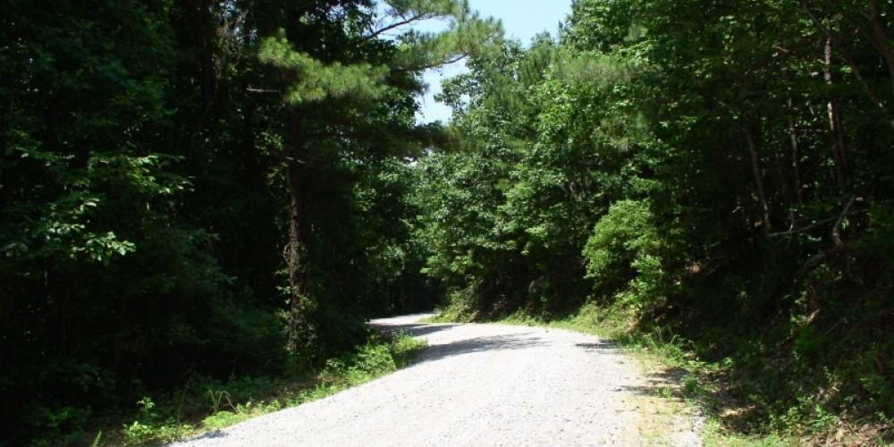 The road up the mountain. – Gary Mathews