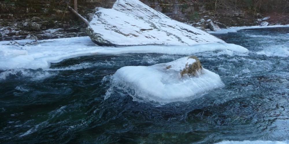 Tellico River – Larry Lane