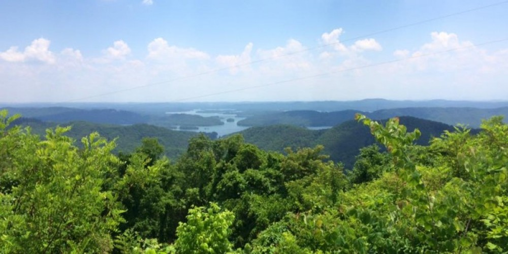 The view from the Clinch Mountain overlook just across the way. – Billy Cardwell