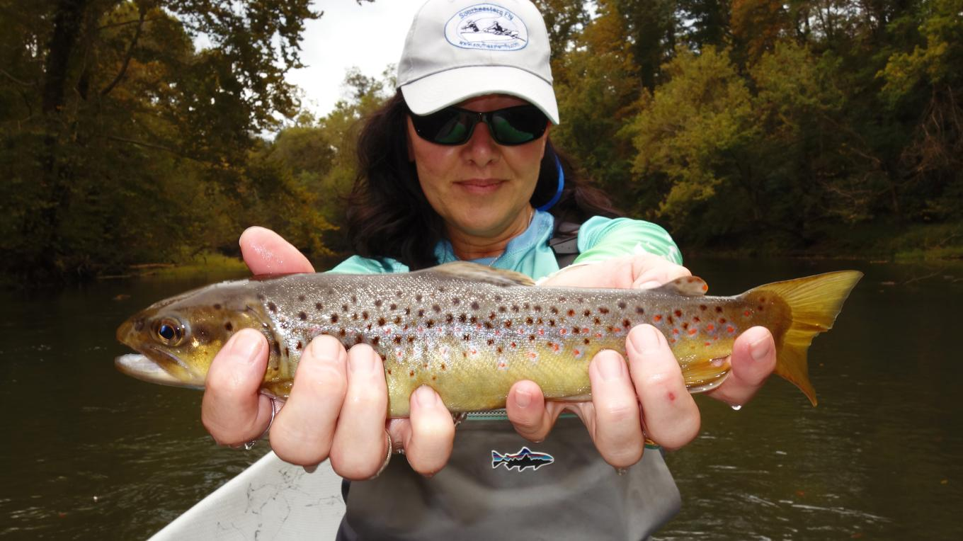 Fly Fishing in the Elk River, near Tims Ford, Tennessee. – John Felsher