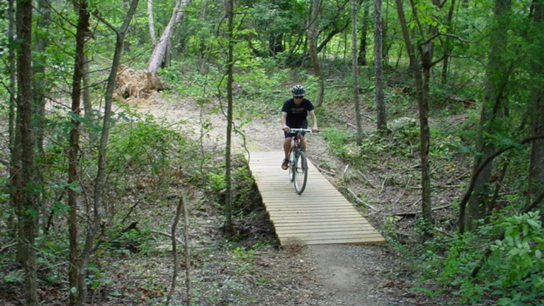 Mountain bike creek crossing – Lee Greene