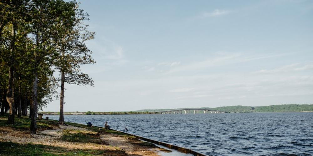 Founded in 1945, Paris Landing State Park was named after an old steamboat and freight landing on the Tennessee River. – Cari Griffith