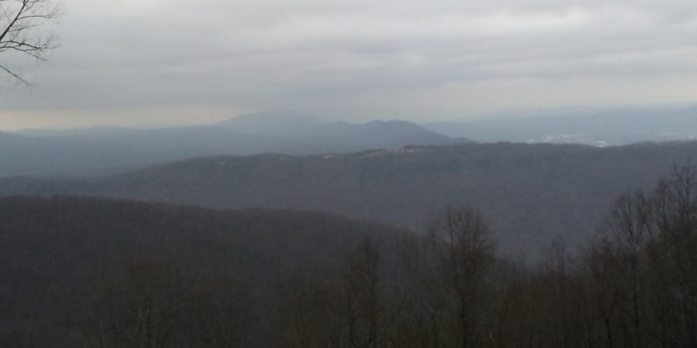 Mountain view from the TWRA trails.