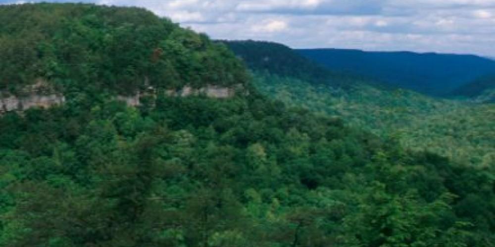 Overlook at Fall Creek Falls