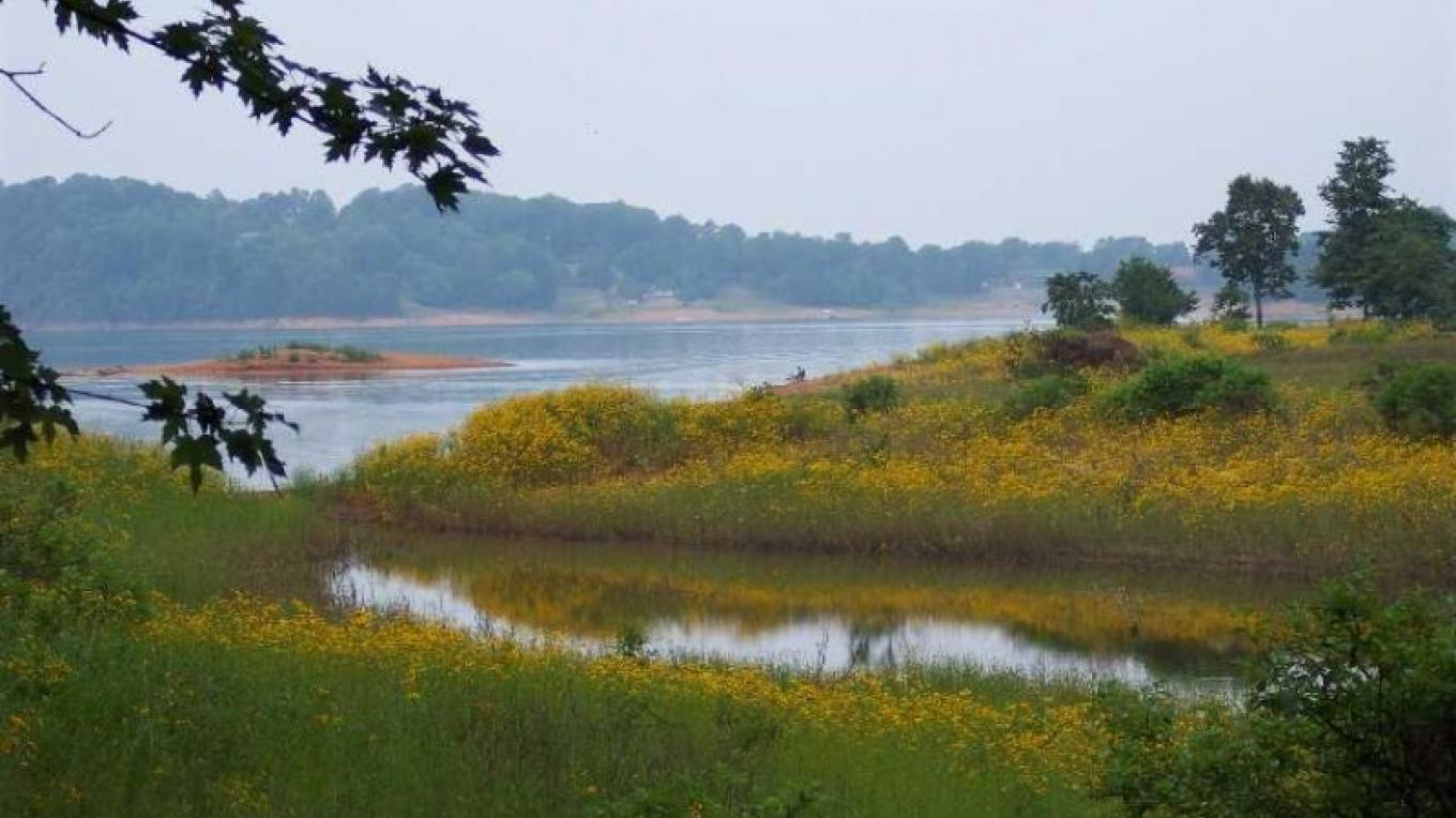 Mossy Creek leads to the beautiful Cherokee Lake, which is known for its world-class fishing and wildlife. – unknown