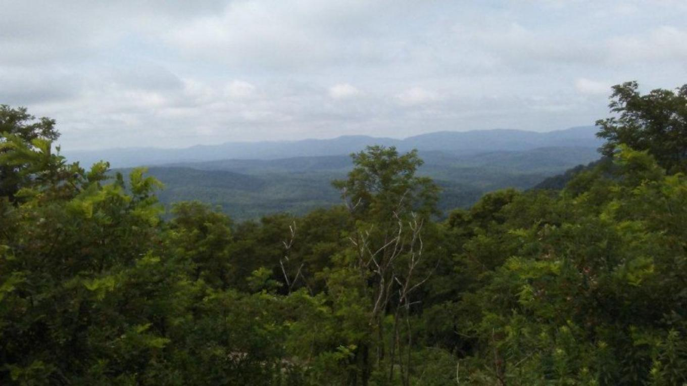 View from the mountain top off the TWRA trails.