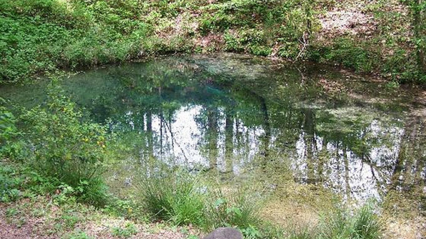Blue Hole Spring at Red Clay State Historic Park – State Photo
