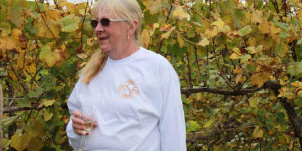Winery and Vineyard – Spout Spring Estates