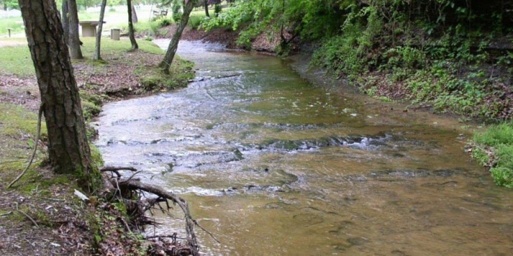 Stream – Courtesy of Tishomingo Tourism