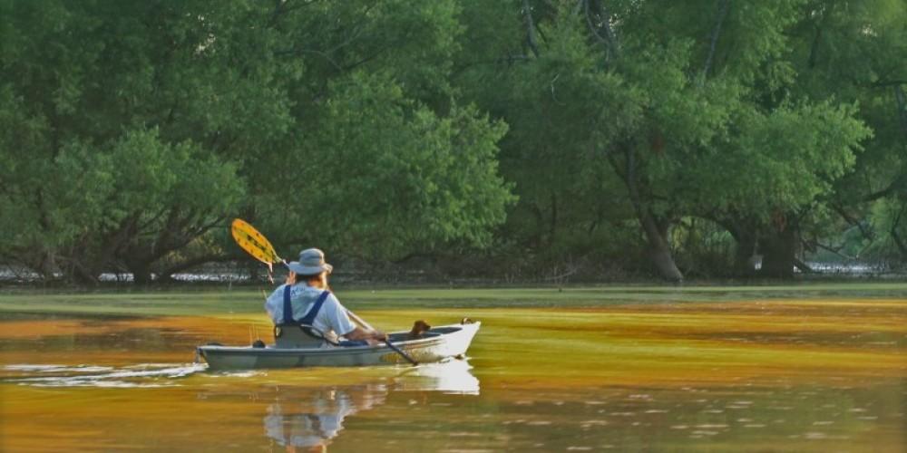 kayaking-Rankin – michael sledjeski