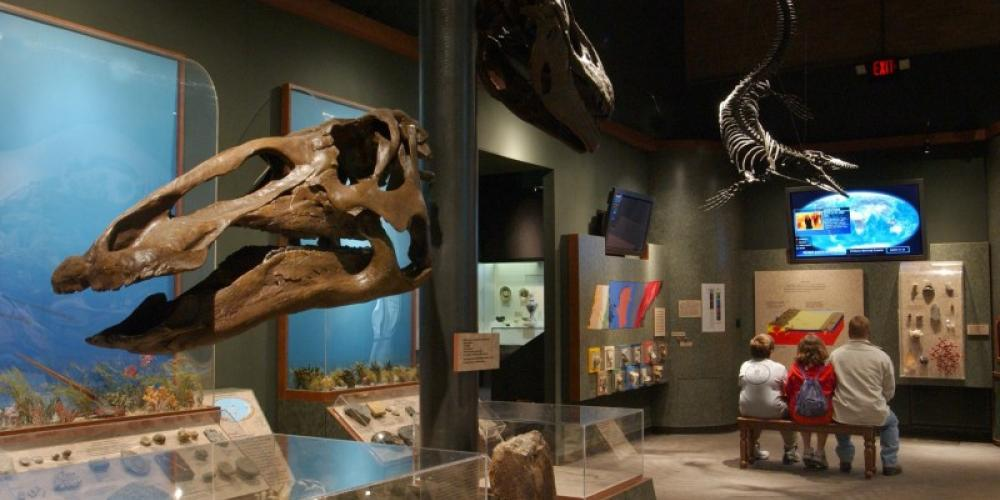 Permanent exhibit -  Geology and Fossil History of Tennessee