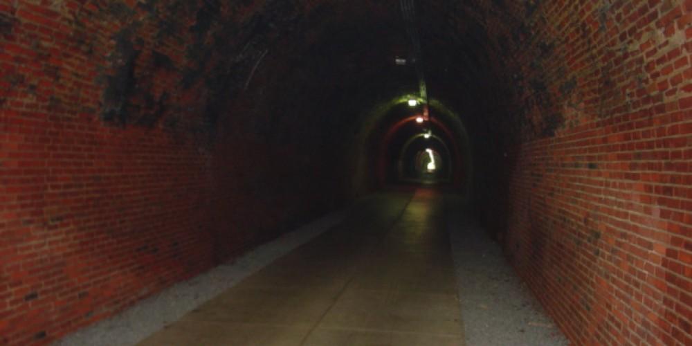 Old Railroad Tunnel – Steve Roark