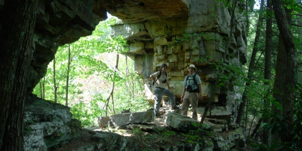 Public access is allowed within the 33-acre natural area, but there are no developed trails. – Tennessee Department of Environment and Conservation