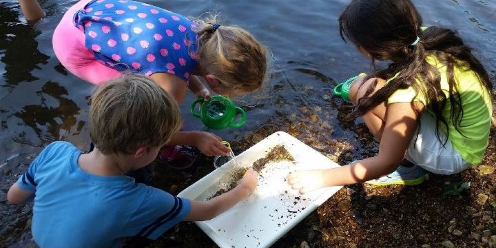 Field trips to the refuge Visitor Center are a great place to learn about nature! – Joan Howe