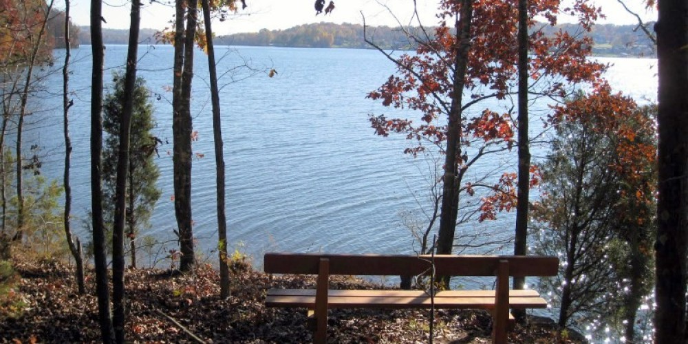 One of several benches along various trail branches. – Lou Livengood