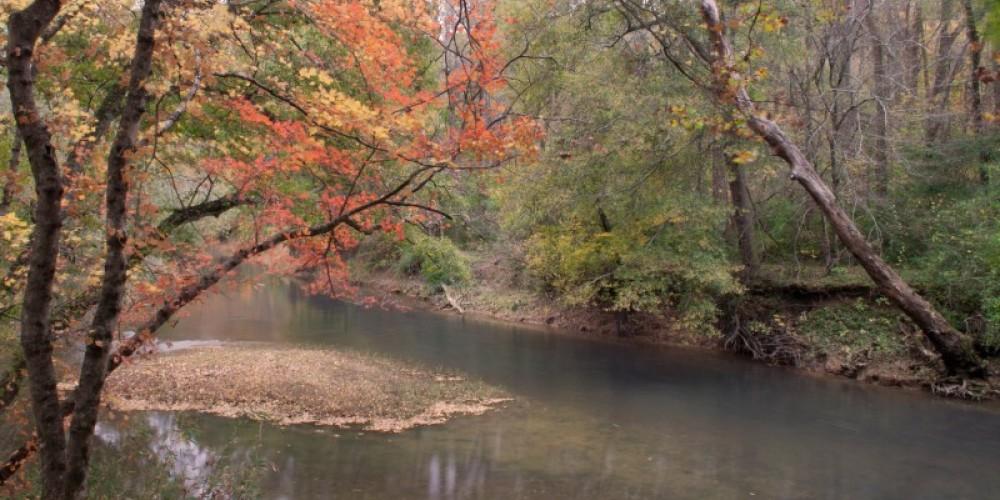 South Chickamauga Creek at Audubon Acres – David Troxel