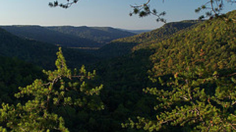 Piney Creek Gorge at Fall Creek Falls