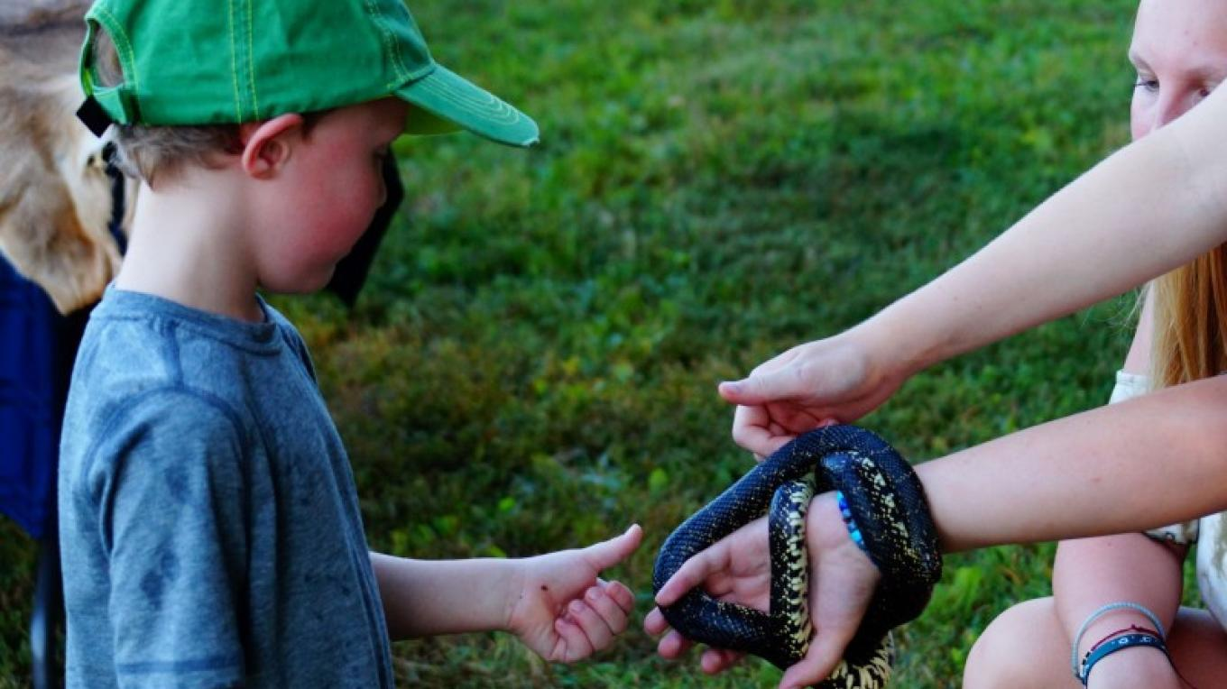 The Wildlife Society from Murray State University show off reptiles and mammal furs. – jMiller/USFWS