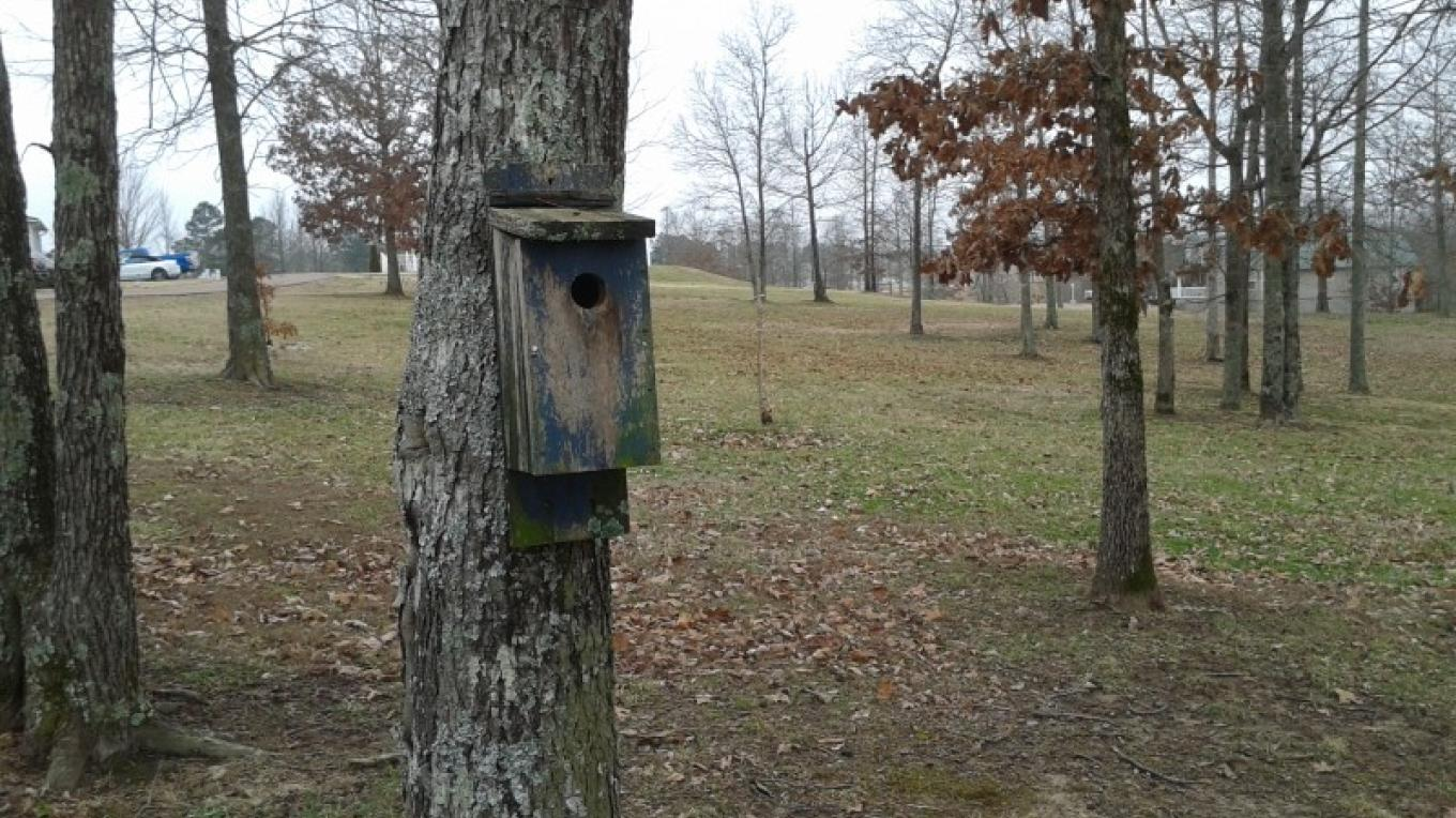 10 year old birdhouse ready for rehab. – James Gibson