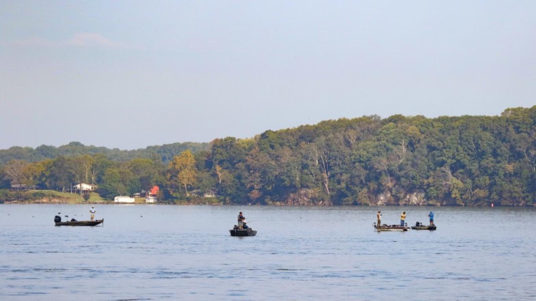 Wheeler Lake – Alabama Bass Trail